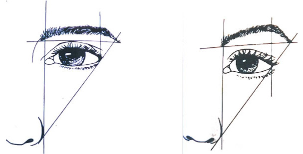 A sketch comparing the eye and brow angle before and after an eyebrow lift.